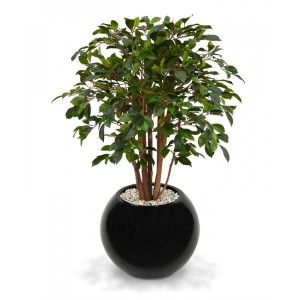 plantes artificielles ficus home staging limmovation
